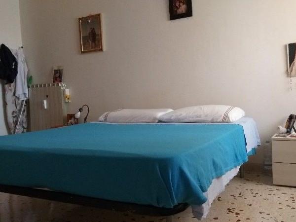 Riferimento A001R_E - Appartamento in Affitto a Civitavecchia