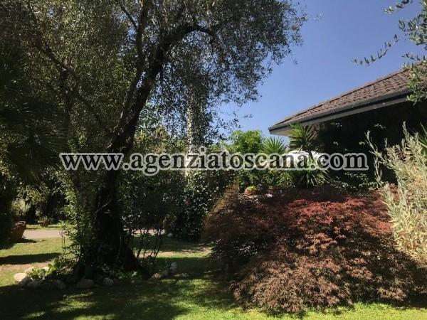 Villa in affitto, Forte Dei Marmi - Caranna -  2