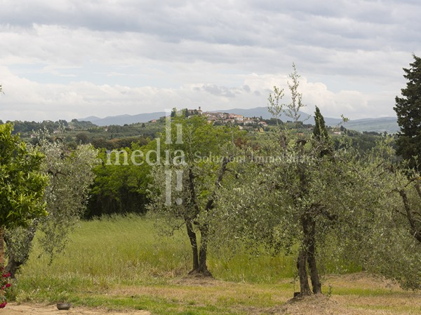 Reference R633 - Detached Villa for Sale in Livorno