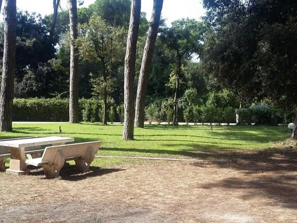 Riferimento 2N1.501 - Appartamento in Vendita a Torre Del Lago Puccini