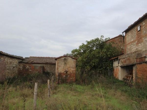 Riferimento VC350 - Azienda Agricola in Vendita a Trequanda