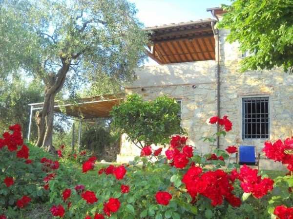 Riferimento SA115 - country house in Affitto in Massarosa - Pieve A Elici