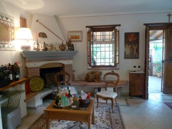 Rif. 2127 - villa bifamiliare in affitto a Camaiore | Foto 7