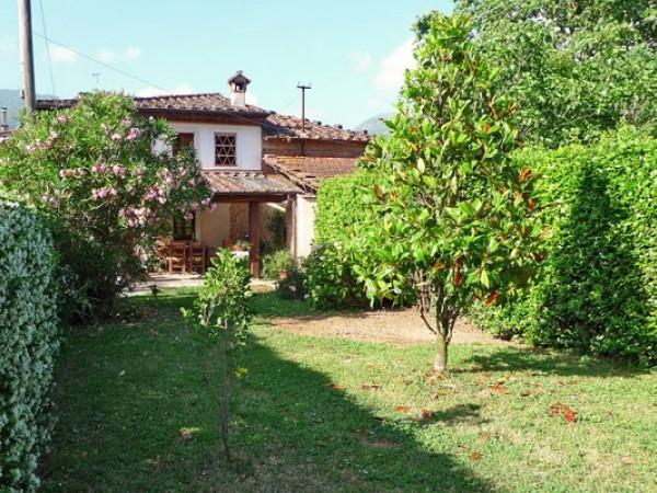 Rif. 2127 - villa bifamiliare in affitto a Camaiore | Foto 3