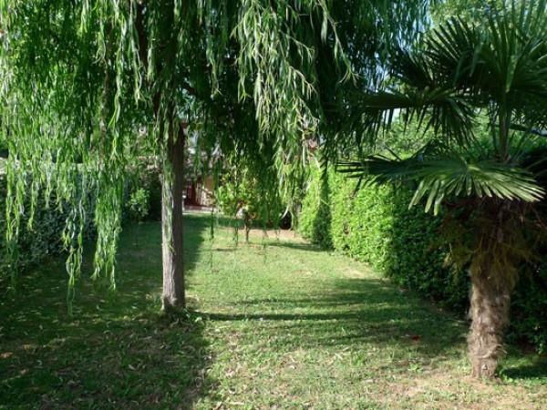 Rif. 2127 - villa bifamiliare in affitto a Camaiore | Foto 16
