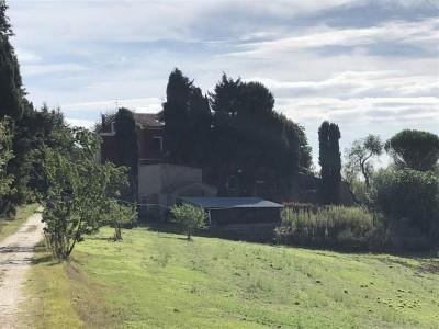 Casolare In Vendita, Chianni - Riferimento: 662-foto19
