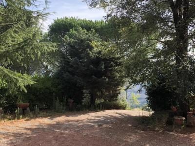 Casolare In Vendita, Chianni - Riferimento: 662-foto2