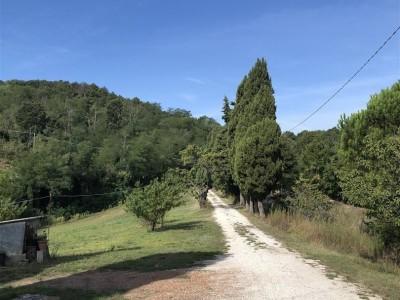 Casolare In Vendita, Chianni - Riferimento: 662-foto17