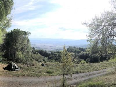 Casolare In Vendita, Chianni - Riferimento: 662-foto15