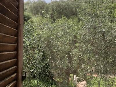 Appartamento In Vendita, Vicopisano - San Giovanni Alla Vena - Riferimento: 663-foto4