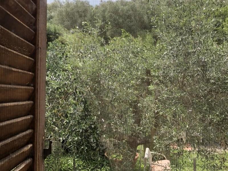 Appartamento In Vendita, Vicopisano - San Giovanni Alla Vena - Riferimento: 663