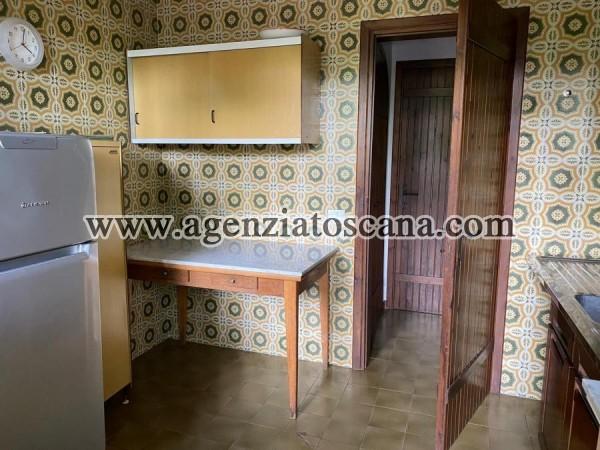 Villa Bifamiliare in affitto, Forte Dei Marmi - Vittoria Apuana -  13
