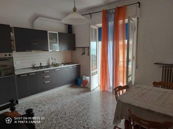 Appartamento in Vendita a Falc