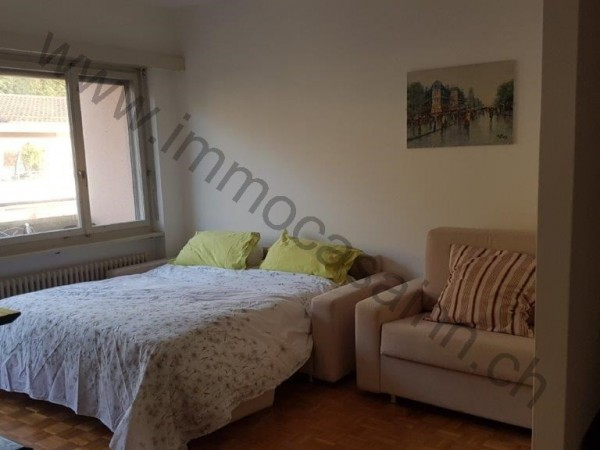 Ref. 561A - Apartment for Rent in Castagnola-cassarate-ruvigliana