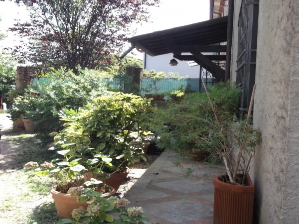 Terratetto in vendita, Seravezza, Querceta