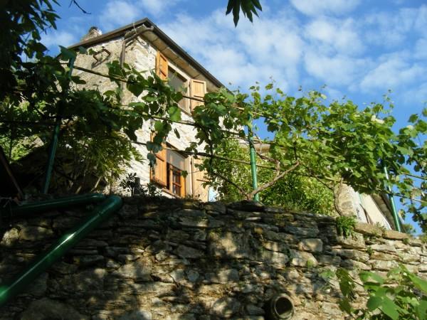 Terratetto in vendita, Pietrasanta, Strettoia