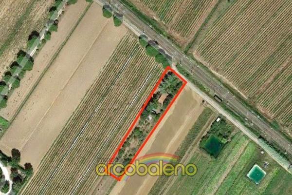 Terreno Agricolo Con Annesso
