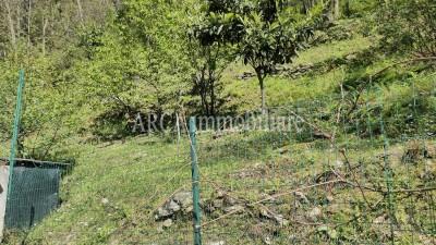 Rusticoin Vendita, Seravezza - Collina - Riferimento: 3013