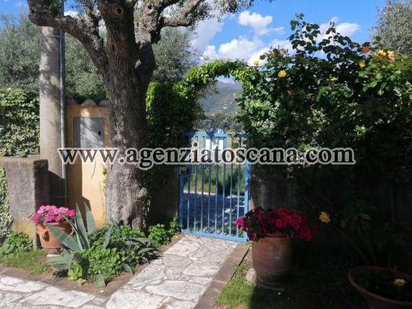 Villetta Singola in affitto, Seravezza -  2