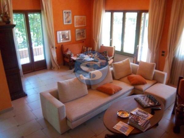 Reference SAR310V - Villa for Rent in Forte Dei Marmi