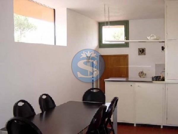 Riferimento SA39 - Appartamento in Affitto a Pietrasanta - Marina di Pietrasanta