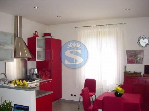 Riferimento SA80 - Villa in Affitto a Pietrasanta - Marina di Pietrasanta