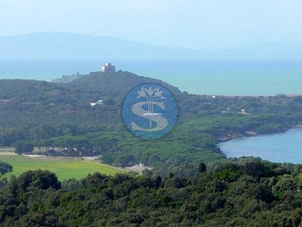 Reference SV1000 - Detached House for Sales in Castiglione della Pescaia - Punta Ala