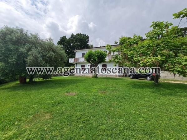 Appartamento in affitto, Pietrasanta - Strettoia -  1