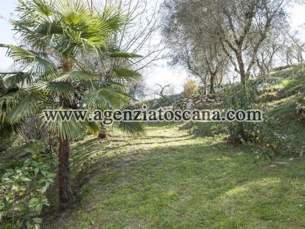Villa in vendita, Lucca - Gattaiola -  6