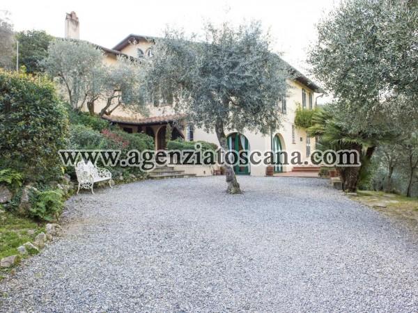 Bella Villa Sulle Colline Lucchesi