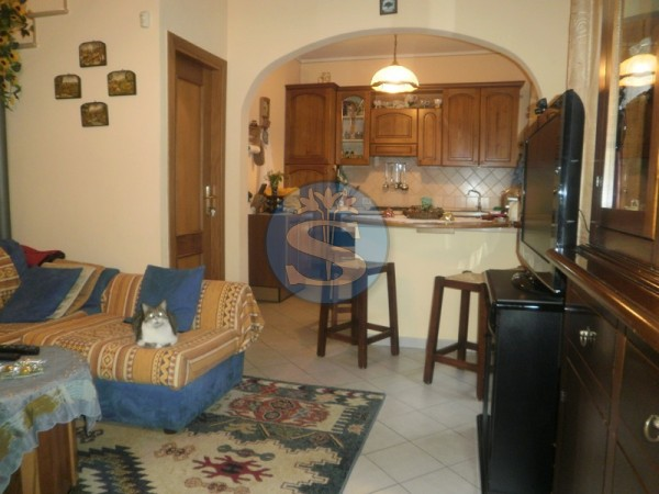 Riferimento SA40 - Detached House in Rentals a Pietrasanta - Marina di Pietrasanta