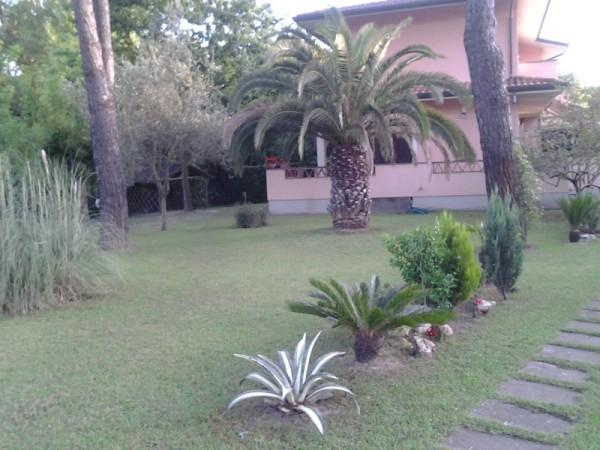Riferimento SA261 - villetta in Affitto in Pietrasanta - Marina Di Pietrasanta