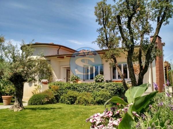Riferimento SA305 - Villa in Affitto a Pietrasanta - Marina di Pietrasanta