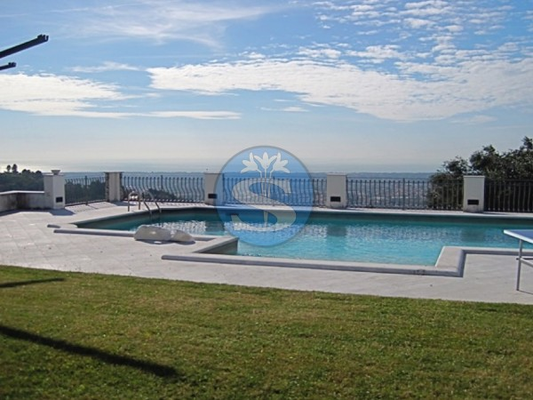 Riferimento SAG122 - Villa in Affitto a Pietrasanta - colline