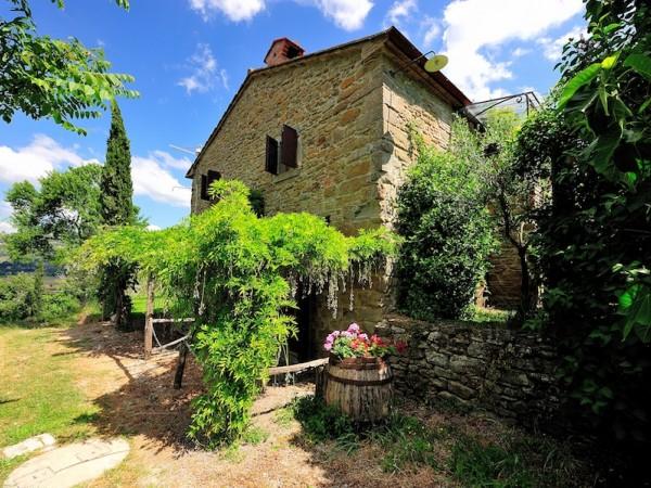 Riferimento SA138 - rustico in Affitto in Cortona - Colline Cortona